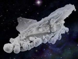 організм неземного походження