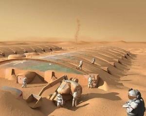 рослини на марсі