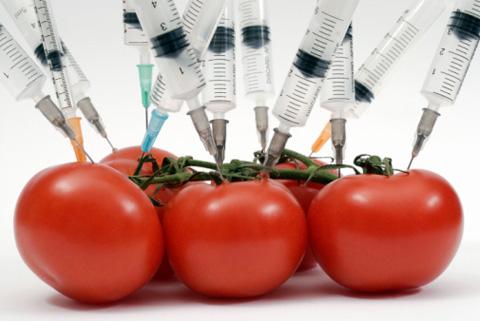ГМО-продукти
