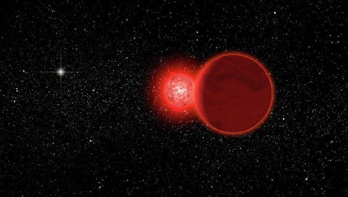 зірка Шольца