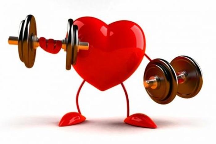 здорове серце
