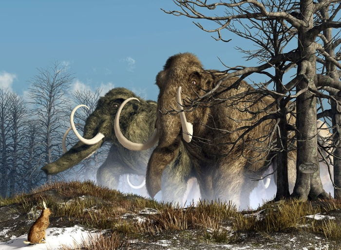 шерстисті мамонти