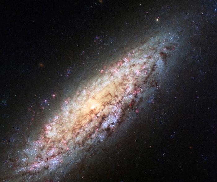 Галактика NGC 6503