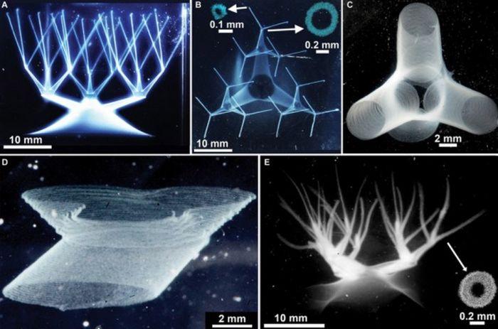 клітини на 3D-принтері