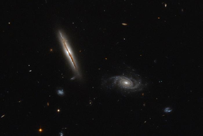 галактика LO95 0313-192