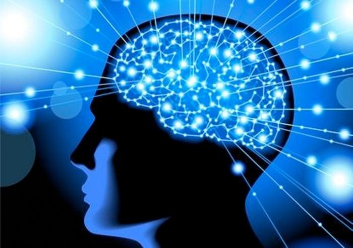 мозок людини