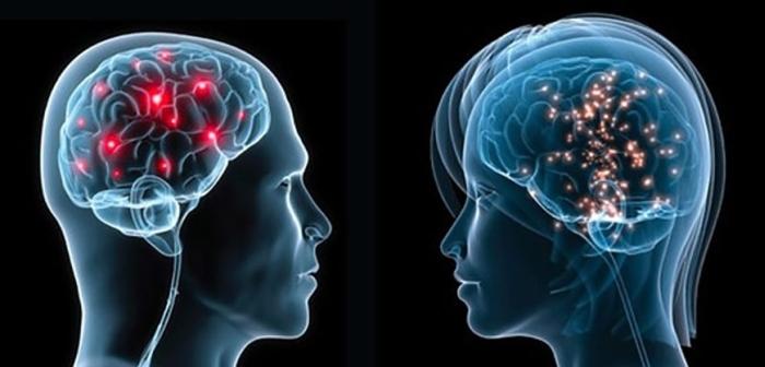 чоловік жінка мозок
