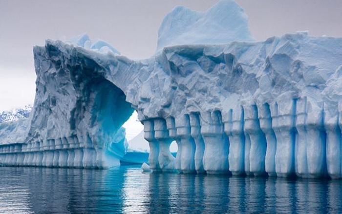 танення полярної криги
