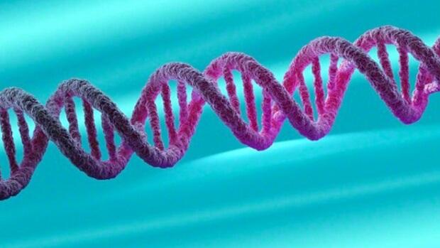 ген дофаміну