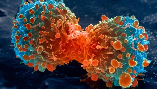 лікування раком імунітетом