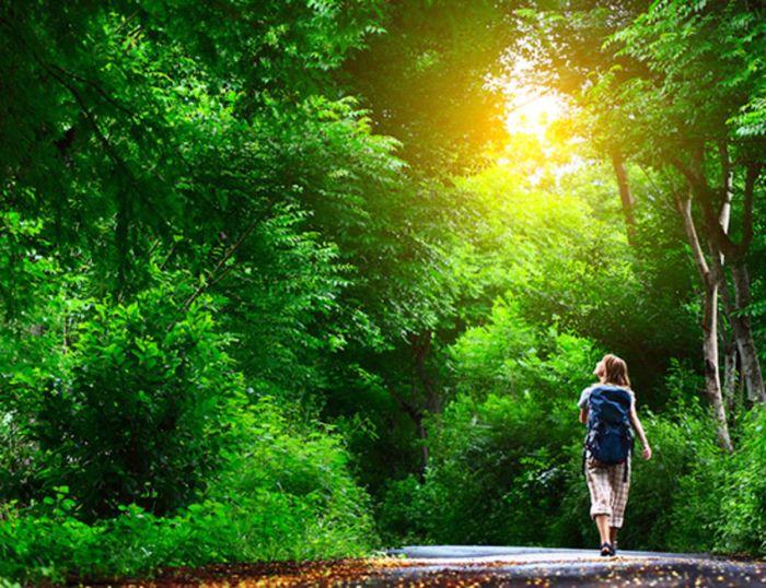 прогулянки на природі