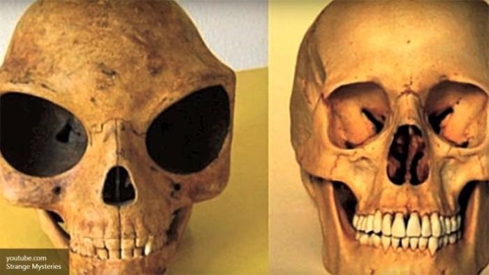 череп інопланетянина
