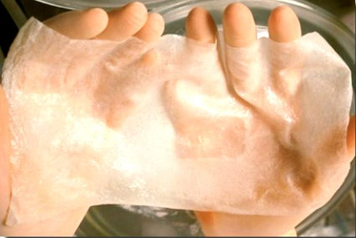 аналог шкіри