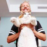 Кіт на прізвисько Самсон