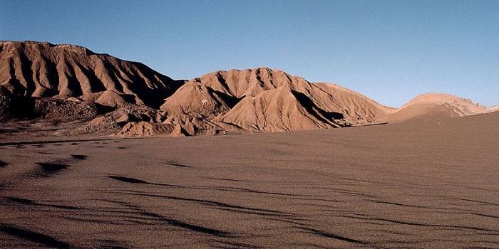 Чилійська пустеля Атакама