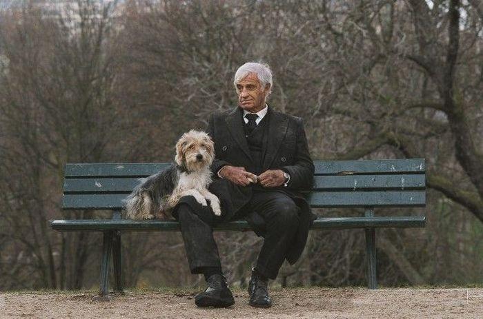 собака друг людини