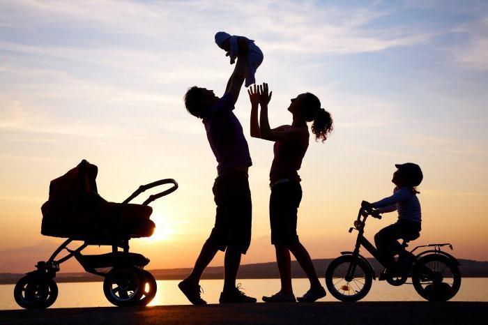 соціальний статус родина