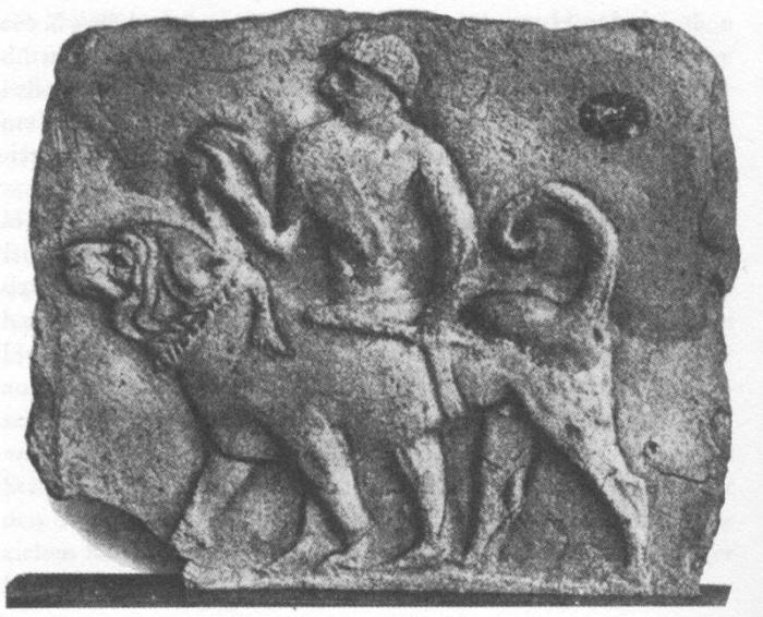 древня домашня собака