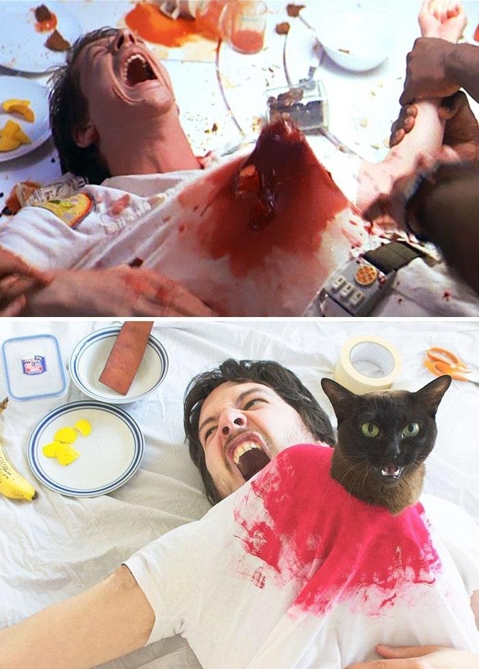 кіт культові фільми