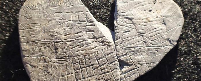 найдавніша карта на камені