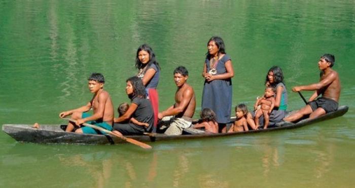 жителі джунглів
