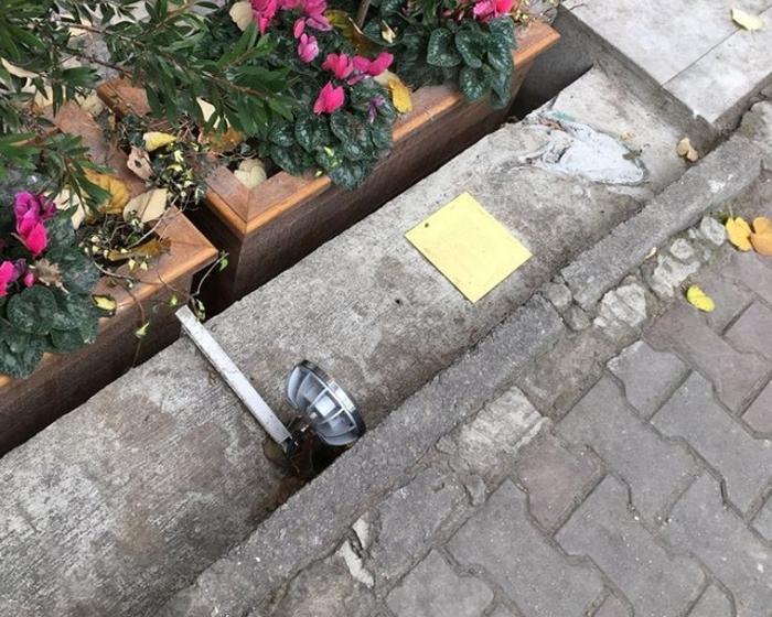вкрали пам'ятник коту Tombili