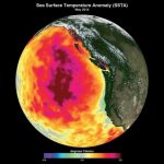 термальний міхур в океані