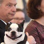 Собака президента Фінляндії