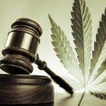 легалізація марихуани