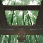 Ford із бамбука