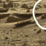 труп інопланетянина марс
