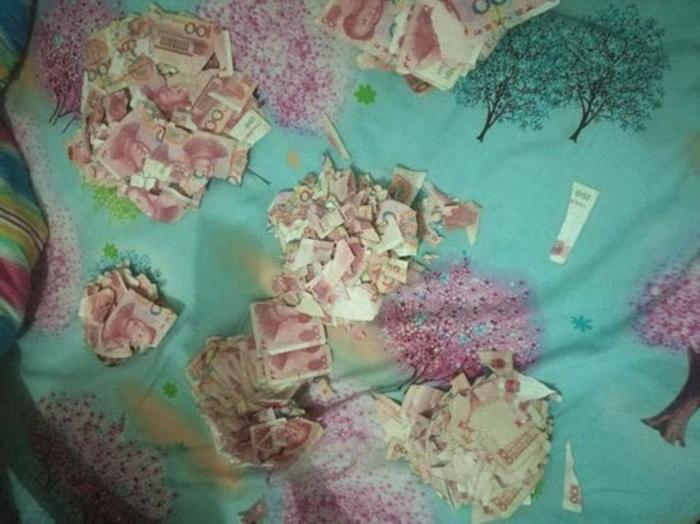 дитина порвала гроші батьків
