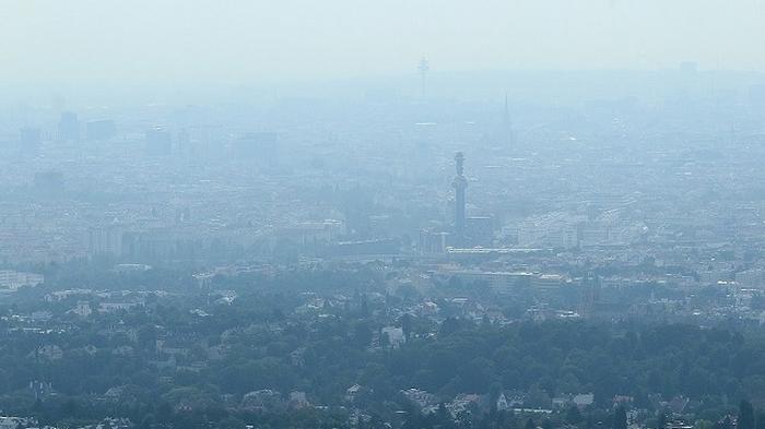Польша смог