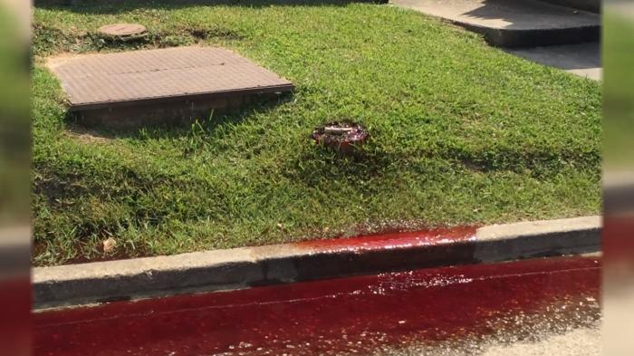 людська кров змішана з формальдегідом