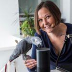 папуга зробив покупки на Amazon