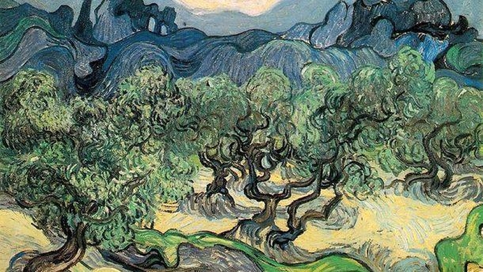 Оливкові дерева Ван Гог