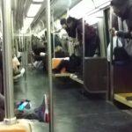 щур у метро