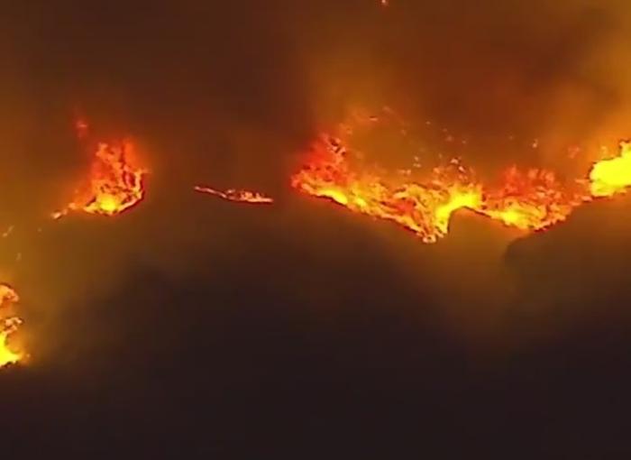 лісові пожежі сша