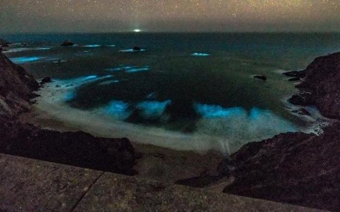 дивовижне сяйво океан