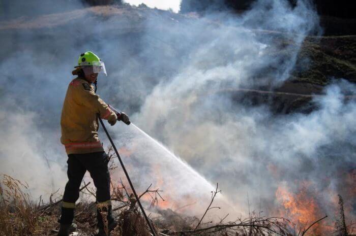 гасіння лісової пожежі